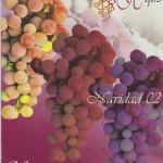 Carta de vinos 2002